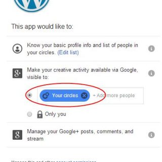 Make sure Jetpack G+ publicize settings work for you.
